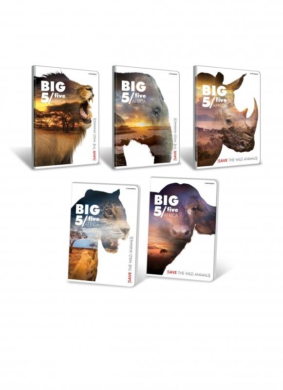 Zeszyt do słówek 95x148 32k kratka Big 5