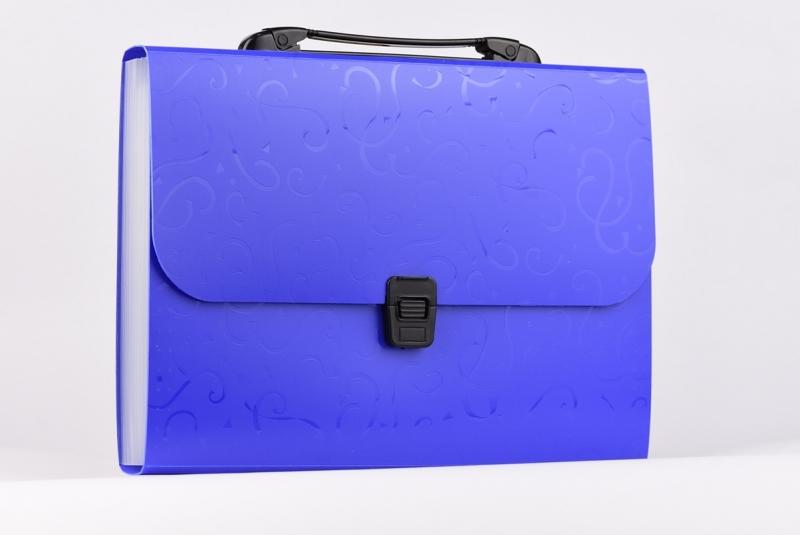 Teczka z przegródkami A4 niebieska 12P TITANUM