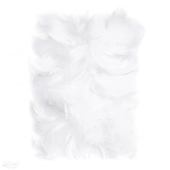 Piórka 5-12cm 10g białe
