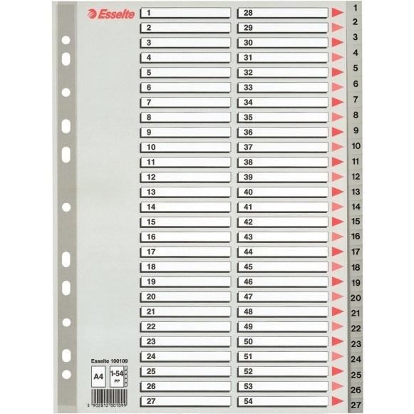 Przekładki plastikowe szare PP A4 1-54 numeryczne ESSELTE