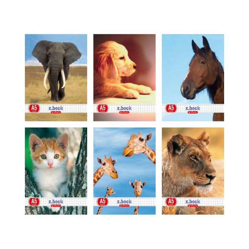 Zeszyt A5 32k kratka Animals Herlitz